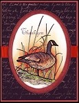 CANADIAN GEESE (4) STATIC MOUNTED RUBBER STAMPS