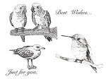 DETAIL BIRDS (5) CLING MOUNTED RUBBER STAMPS