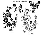 MORNING GLORY (4) STATIC MOUNTED RUBBER STAMPS
