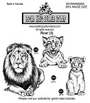 ROAR (3) STATIC MOUNTED RUBBER STAMPS