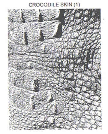 CROCODILE SKIN 1 STATIC MOUNTED RUBBER STAMP