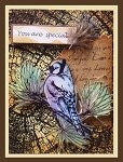 BLUE JAY (5) CLING MOUNTED RUBBER STAMPS