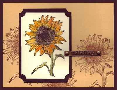 BLOOMIN' (4) CLING MOUNTED RUBBER STAMPS