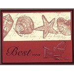 SEA SHELLS (6) CLING MOUNTED RUBBER STAMPS