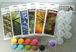 2020 fall designs background stamp combo set + 1 set of Magic mushroom + 2 holding bases + 10 individual containers  Pre-order only